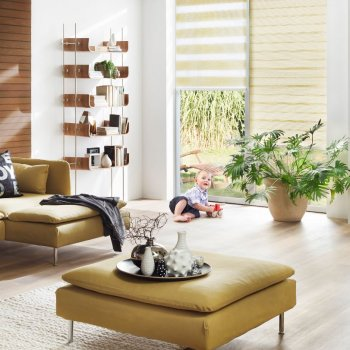 Day & Night Blinds Falkirk