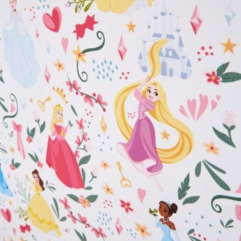 Disney Princess Blinds UK