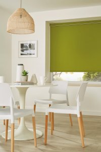 Garden green Roller Blinds Glasgow