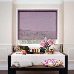 Grape Roller Blinds Glasgow