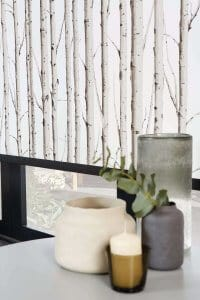 Woodland Silver Birch Roller Blinds Glasgow