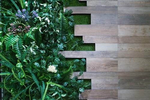living wall greenery