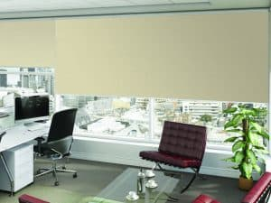 Commercial Blinds for office windows